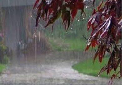मौसम ने ली करवट देश के इन राज्यों में बारिश के आसार